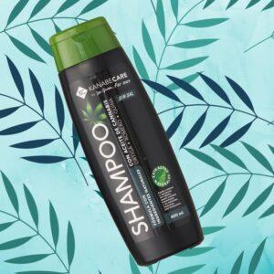 Shampoo para hombre con aceite de cannabis